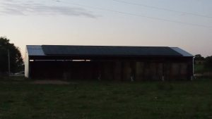 Buff-100 Panels